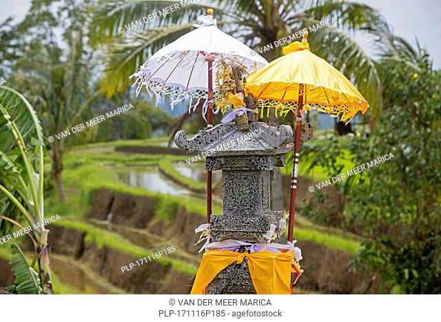 Little Hindu altar / sanggah in the Jatiluwih terraced paddy fields, rice terraces in the highlands of West Bali, Indonesia