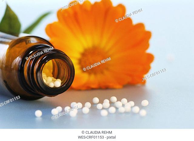 Medicinal flask with pills in front of marigold, close-up