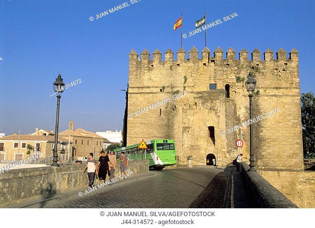 La Calahorra tower. Córdoba. Spain