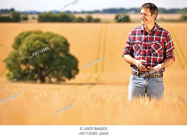 Farmer looking away in sunny rural barley crop field