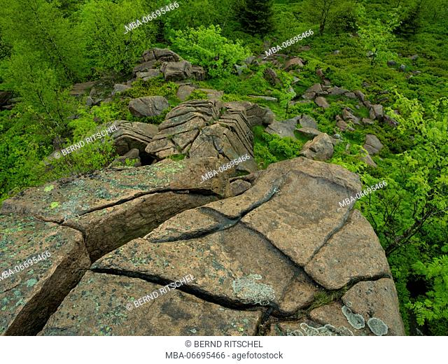 Cliff face at the Lugstein, Ore Mountains, Saxony, Germany
