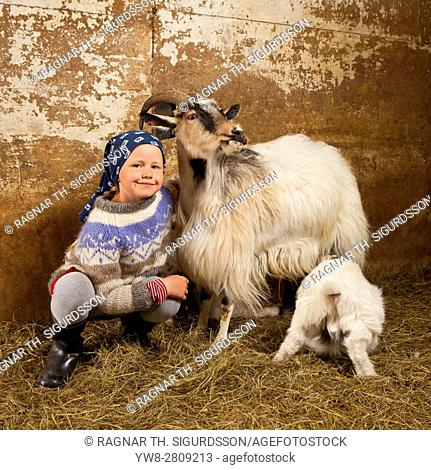 Young girl with goats, Goat farm, Western Iceland