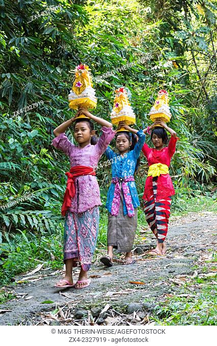 Three girls walking to the temple with offerings for a ceremony on the head, Bali, Indonesia