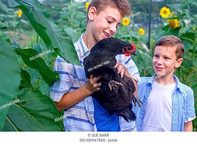 Portrait of brothers in field holding hen