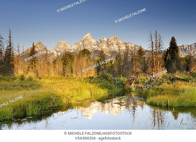 Teton Mountain Range from Schwabacher Landing, Grand Teton National Park, Wyoming, USA