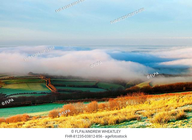View of valley with early morning sunshine beginning to burn off heavy fog, over Liddicombe and Moor Gate, Exmoor, North Devon, England, april