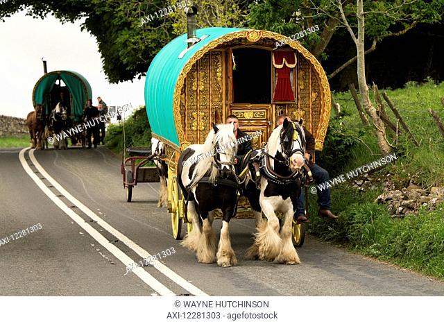 Traditional gypsy horse drawn caravan on road heading towards Appleby Horse Fair; Cumbria, England