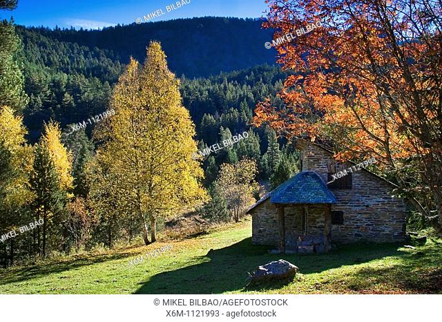 House and forest in autumn  Aiguamog Valley  Aran Valley  Pyrenees mountain range  Lerida province  Catalonia, Spain, Europe
