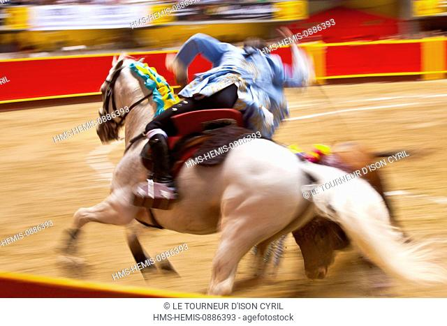 Colombia, Antioquia Department, Medellin, the Macarena Arena during a bullfight or a corrida. Killing the bull by a horse man