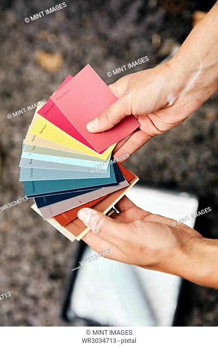 A person holding a paint colour chart, and a paint tray and roller in the background