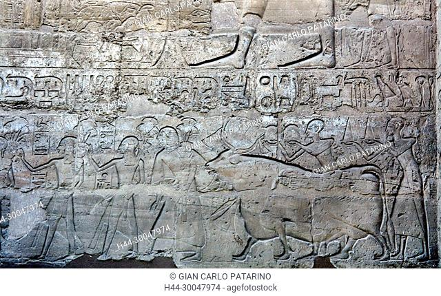 Luxor, Egypt. Temple of Luxor (Ipet resyt): bearers of gifts