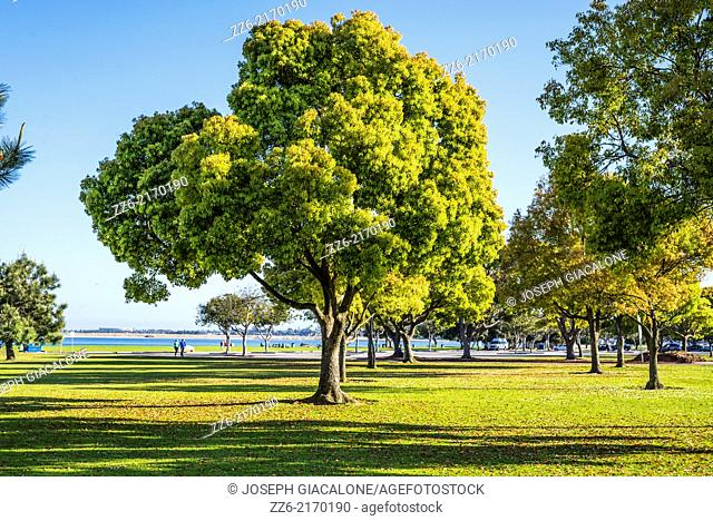 Crown Point Shores Park. San Diego, California, United States
