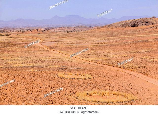 fairy circles and track in dry season, Namibia, Damaraland, Khorixas