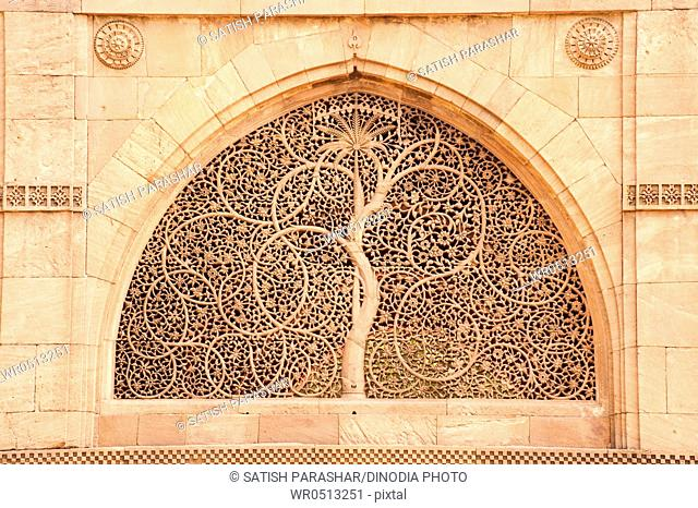Carving of tree on the wall of sidi saiyad's mosque , Ahmedabad , Gujarat , India
