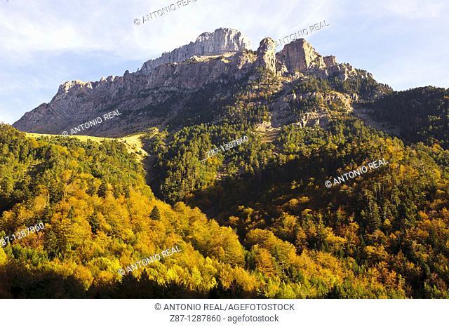 Valle de Hecho  Parque Natural Valles Occidentales  Pirineos  Huesca