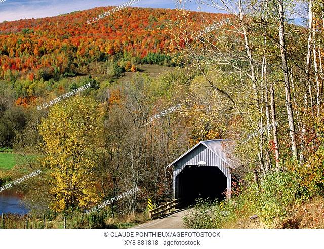 Covered-Bridge-