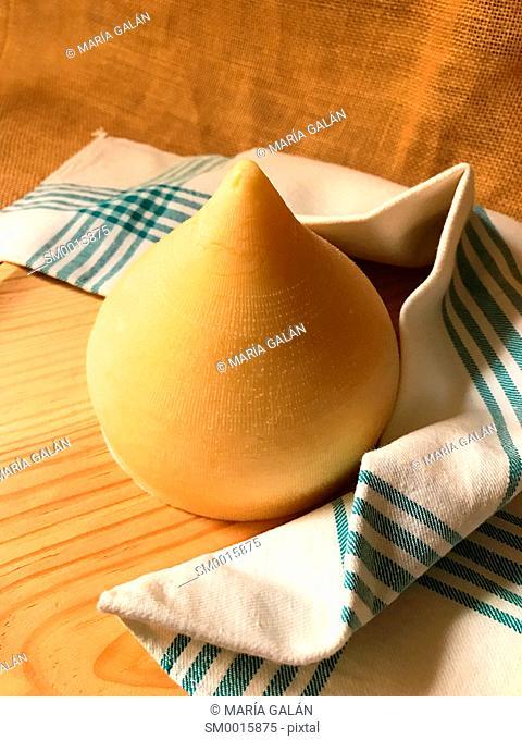 Tetilla cheese. Galicia, Spain