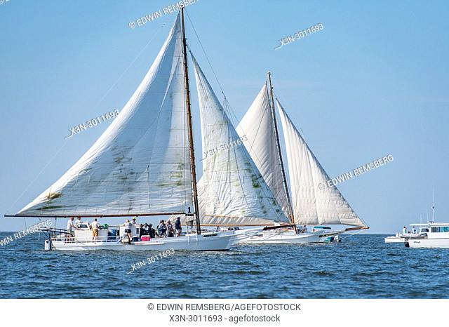 Two traditional Skipjack boats sailing neck and neck on the Chesapeake Bay in annual Deal Island Skipjack Race, Deal Island, Maryland. USA