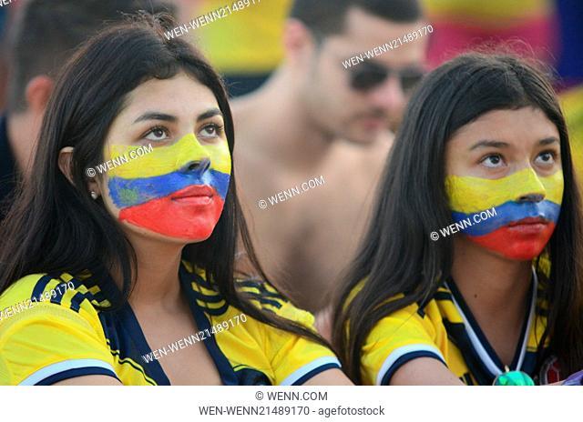 2014 FIFA World Cup - Group C - Japan v Colombia (1-4) held at Arena Pantanal - Fans Where: Rio de Janeiro, RJ When: 24 Jun 2014 Credit: WENN.com