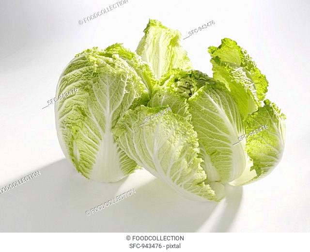 Two heads of Chinese cabbage