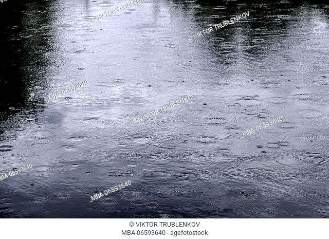 Natural Science, Circles from a rain on a surface of river water