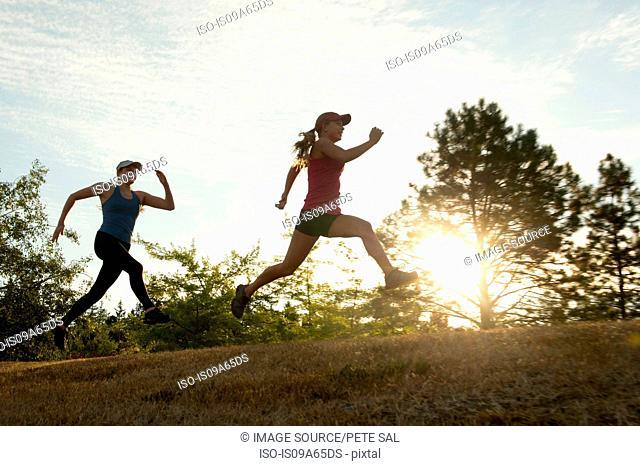 Teenage girls running together in field