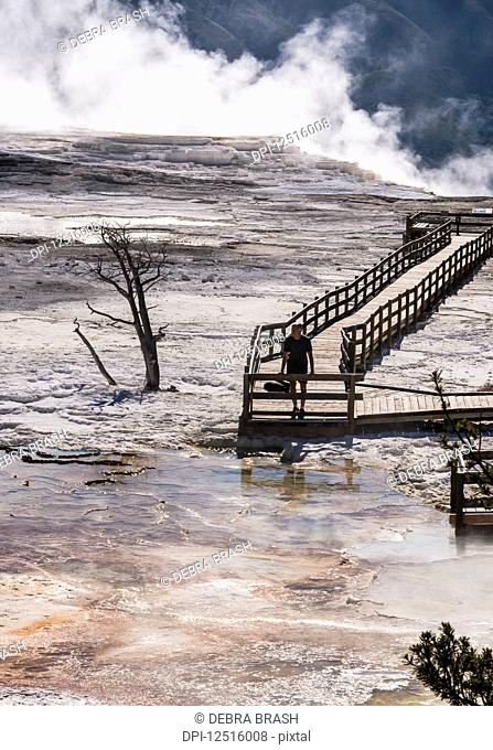Man walks on boardwalk at Mammoth Hot Springs, Yellowstone National Park; Wyoming, United States of America