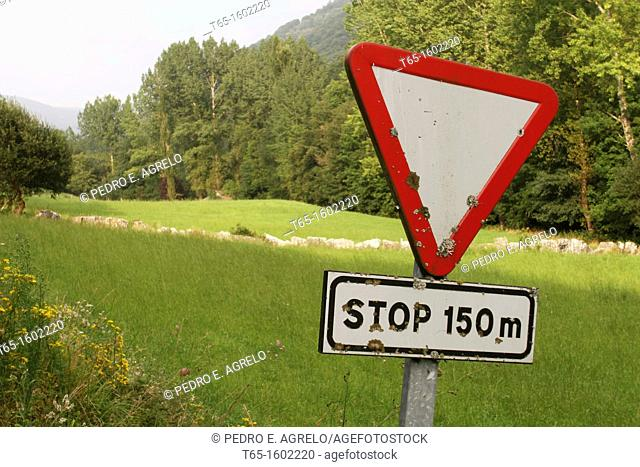 Traffic signal on a green meadow