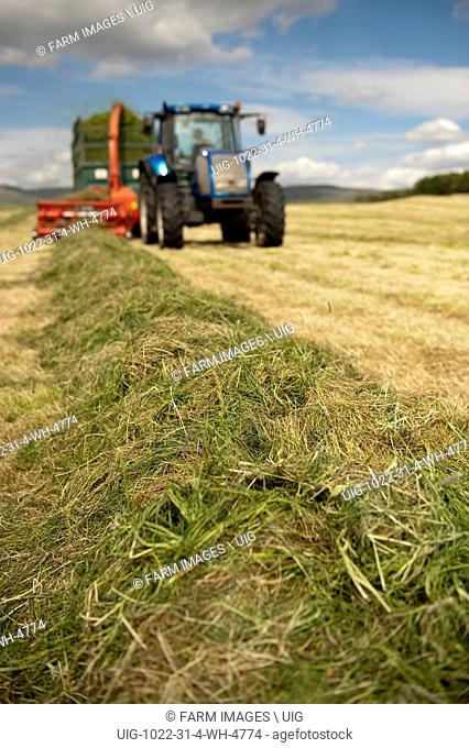 looking up a row of grass towards a tractor pulling a forage harvester and trailer making silage for livestock. (Photo by: Wayne Hutchinson/Farm Images/UIG)