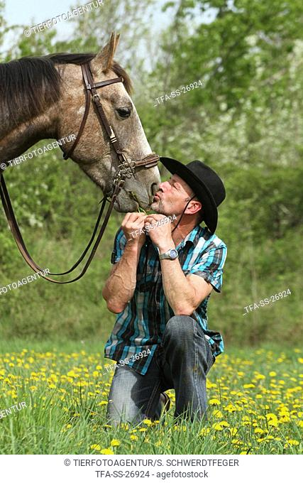 man and American Paint Horse