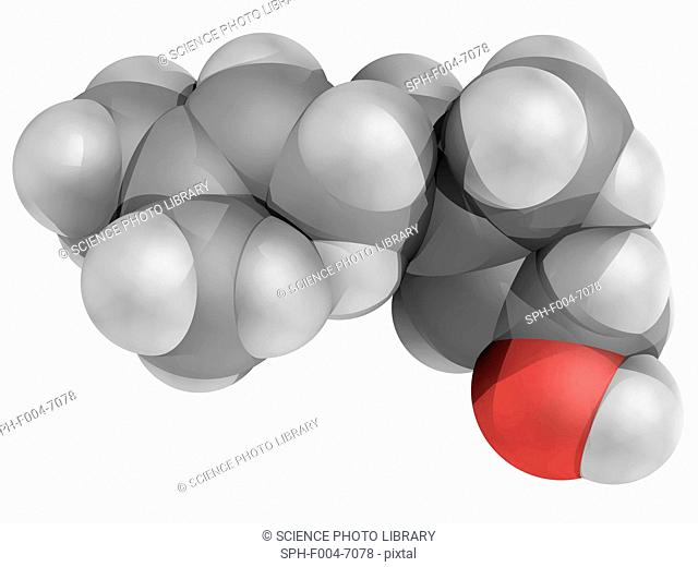 Geraniol, molecular model. Pale-yellow oil, primary part of rose oil, palmarosa oil and citronella oil. Small quantities found in geranium