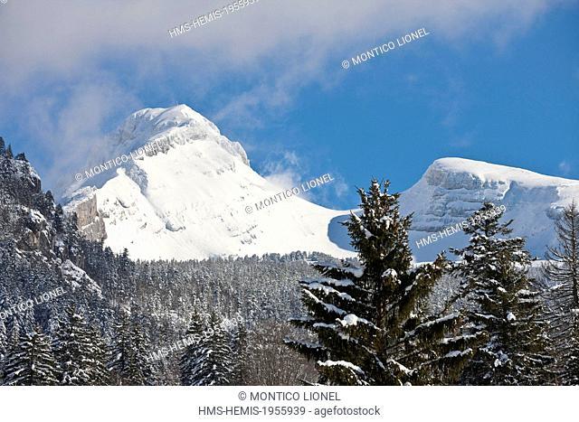 France, Isere, La Grande Moucherolle, Parc naturel regional du Vercors (Regional Natural Park of Vercors)