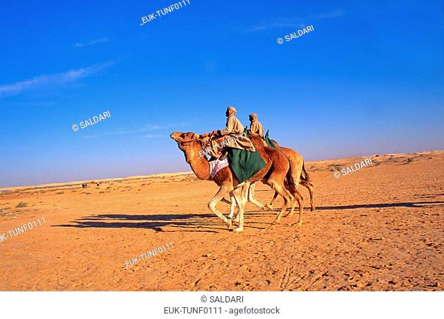 Camel Riders, Douz Festival,Tunisia