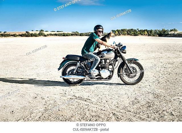 Mid adult man and dog riding motorcycle on arid plain, Cagliari, Sardinia, Italy