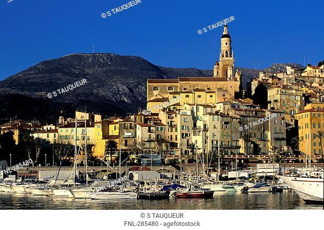 Boats moored at harbor, Cote d'Azur, France