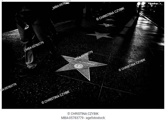 LA Noir: Hollywood Boulevard at Night - Walk of Fame Marilyn Monroe Star