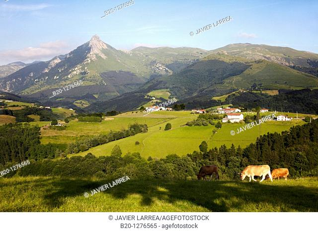 Monte Txindoki, Sierra de Aralar, Lazkaomendi, Gipuzkoa, Euskadi, Spain