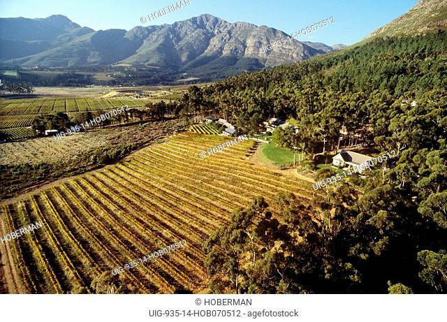 Le Petite Ferme Wine Estate, Franschhoek, Western Cape