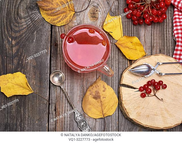 Transparent cup with hot tea from viburnum berries, fresh berries on a gray wooden table, top view