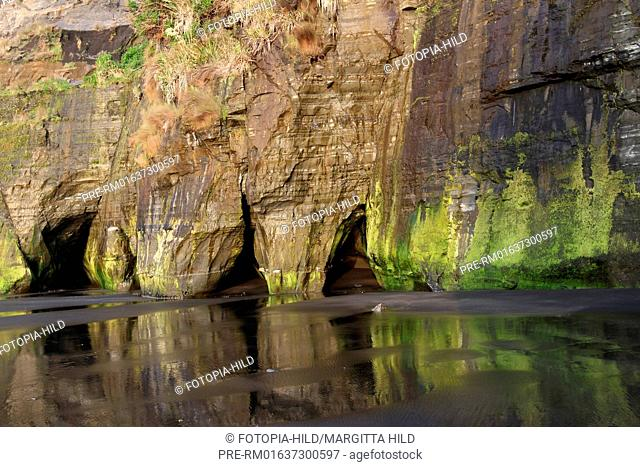 Caves at the coast near Tongaporutu, Taranaki region, North Island, New Zealand / Felshölen an der Küste bei Tongaporutu, Region Taranaki, Nordinsel, Neuseeland