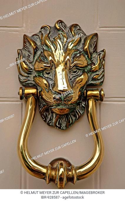 Lion head as a door knocker, Rye, Sussex, England, Europe