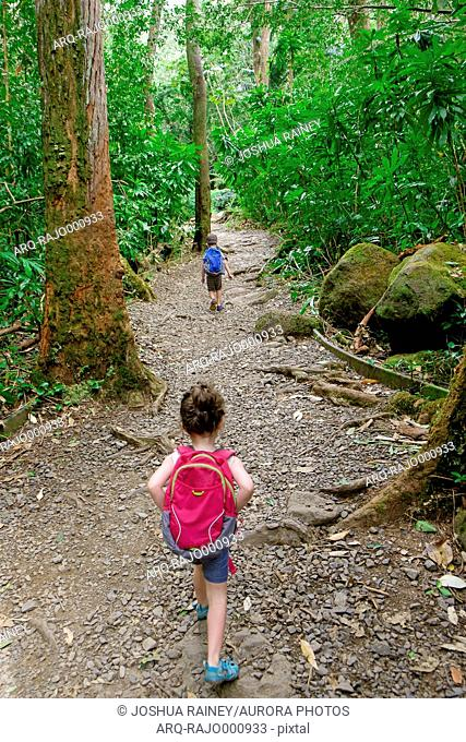 Young brother and sister hiking on the Manoa Falls Hiking Trail in Oahu Hawaii