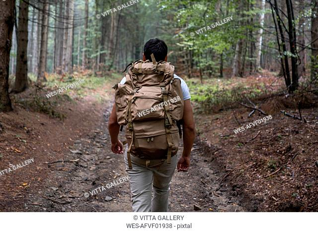 Bulgaria, Balkan Mountains, hiker with backpack on hiking trail, rear view