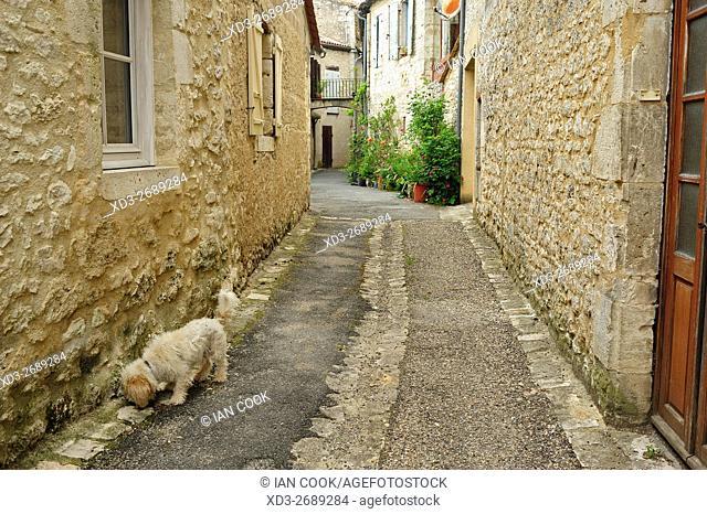 narrow street, Issigeac, Dordogne Department, Aquitaine, France