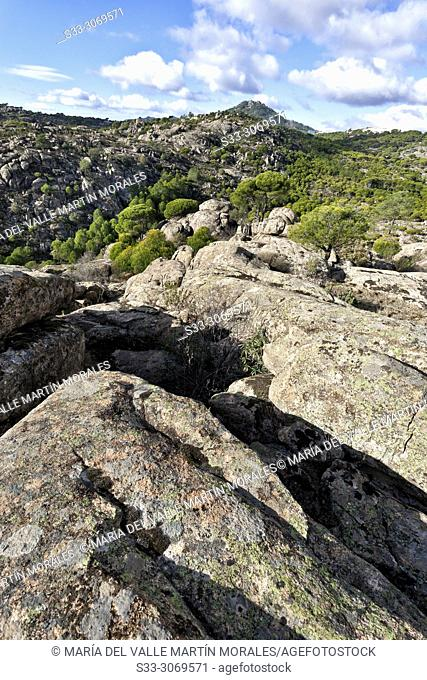 Granite rocks and pines at Muniana cliff on the background. Cadalso de los Vidrios. Madrid. Spain