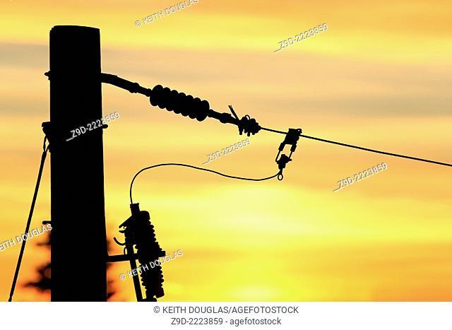 Conductors on power pole at sunset, Nanaimo, Vancouver Island, British Columbia