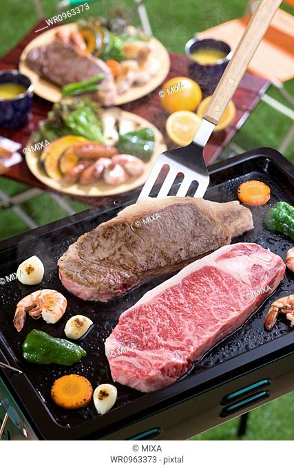 Steak and Vegetable Grilled on Barbecue Grill