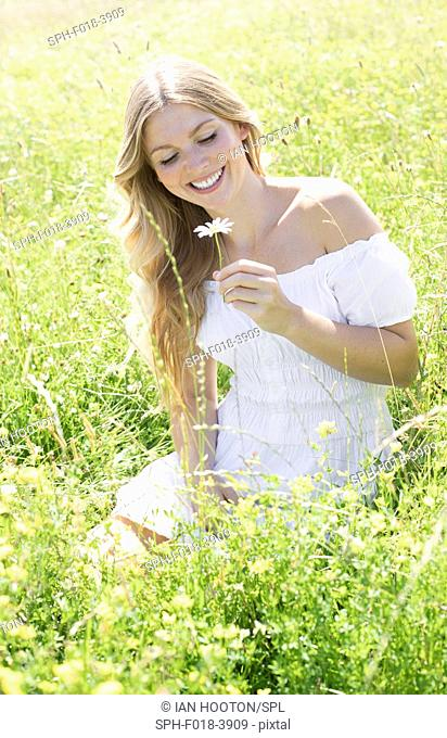 MODEL RELEASED. Young woman sitting in meadow holding daisy