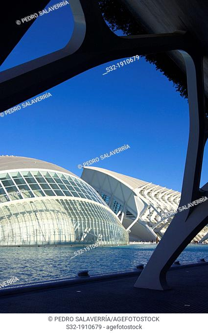 Hemisferic in the City of Arts and Sciences, designed by Valencian architect Santiago Calatrava, offers a wide range of music and cultural events  Valencia