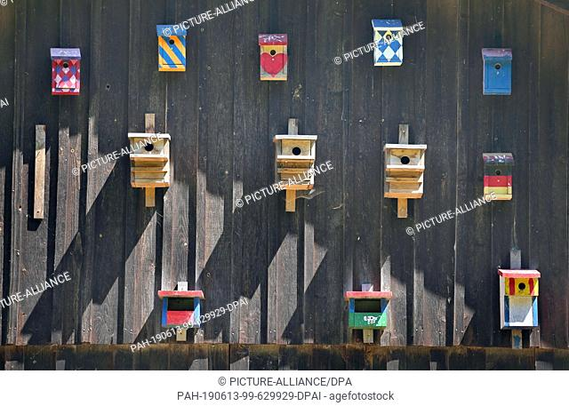 13 June 2019, Bavaria, Friesenried: Birdhouses in different colours are mounted on the outside wall of a farm. According to the owner